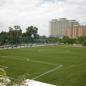 Công ty cung cấp cỏ nhân tạo và lưới chắn bóng uy tín